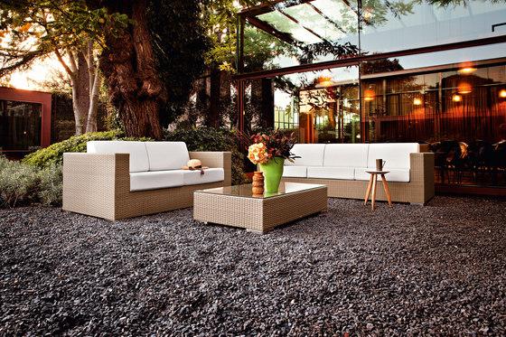 Cora lounge chair by Varaschin