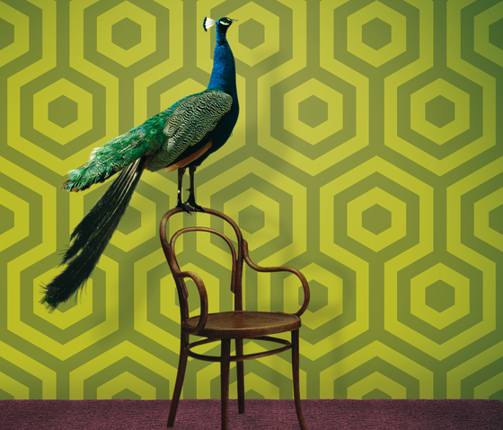 Hexágono 1961-4 di Tres Tintas Barcelona