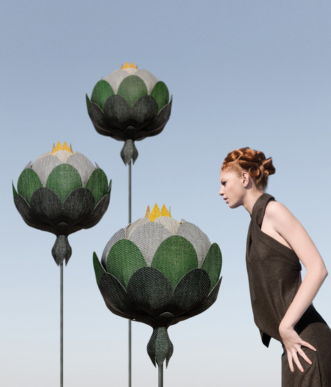Botanic Lotus by Bolon