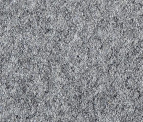 Schladminger grey de Steiner1888