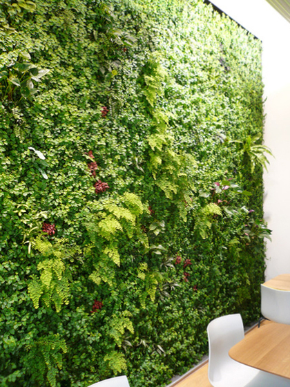 GREEN WALL® by art aqua