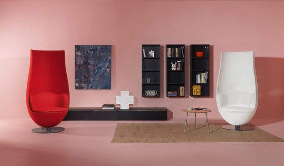 Wanders' Tulip Chair by Cappellini