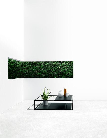 Helsinki rectangular table by Desalto