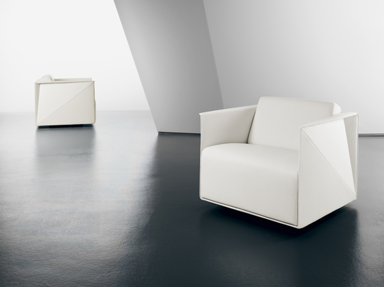 T-Ray armchair by Walter Knoll