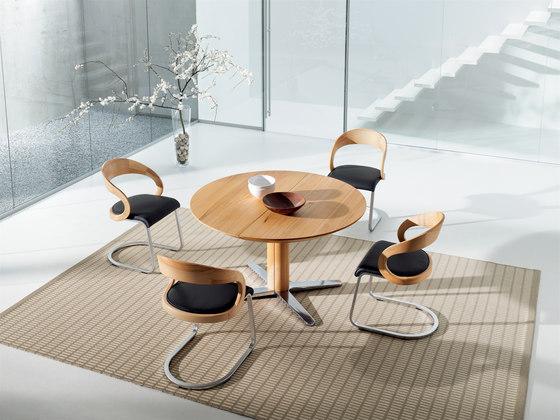 girado  chair with center leg by TEAM 7