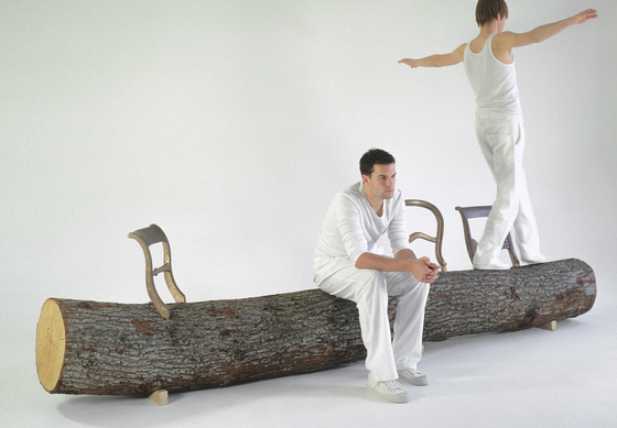 Tree-trunk bench by Droog