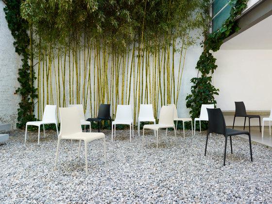 Petra | Chair Black Indoor / Outdoor by Ligne Roset