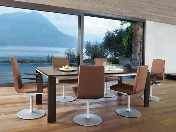 rolf benz 620 chairs from rolf benz architonic. Black Bedroom Furniture Sets. Home Design Ideas