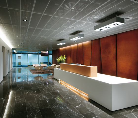 Andromeda Ceiling 300x900 by Artemide Architectural