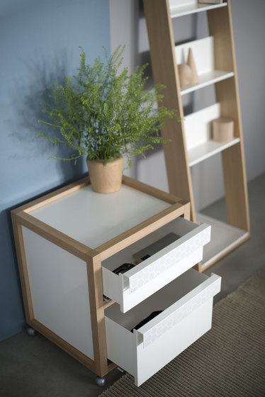 Double Drawers by EX.T