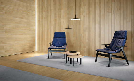 Ace Armchair by viccarbe