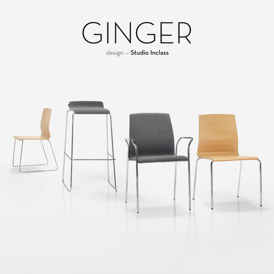 Ginger by Inclass