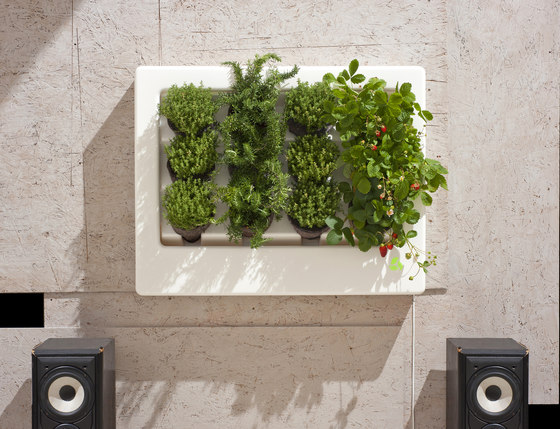 Floraframe by Greenworks