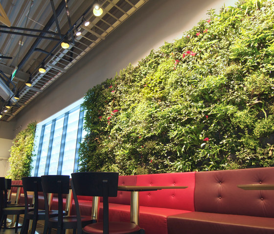 Indoor Plant Walls by Greenworks