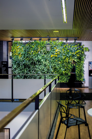 Indoor Vertical Garden | Body Shop Nacka Forum by Greenworks