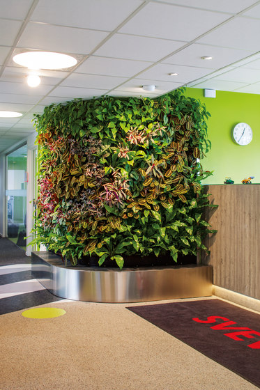Indoor Vertical Garden | Superfruit von Greenworks