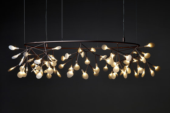 heracleum II pendant light by moooi