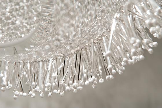 Sea Urchin - Riccio von Terzani