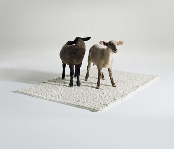 Fat Sheep - Rug by Pudelskern