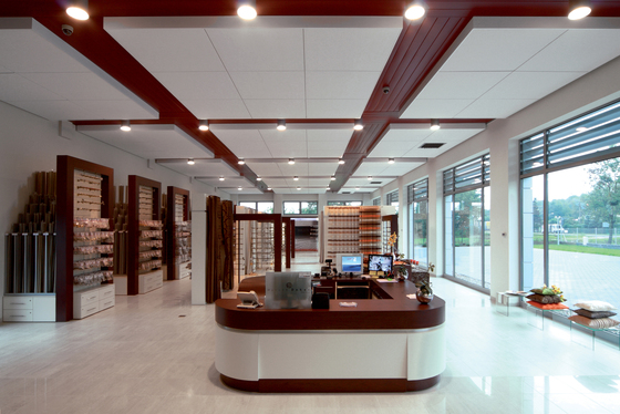 Techstyle 174 Acoustical Ceilings Swing Down Ceiling Panels