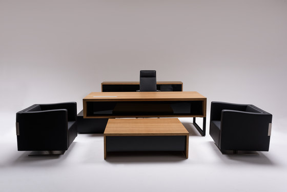 HD 10 | desk by ERSA