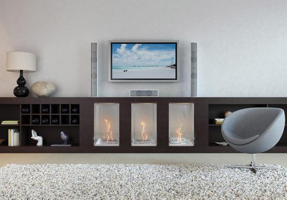 Firebox 450SS by EcoSmart™ Fire