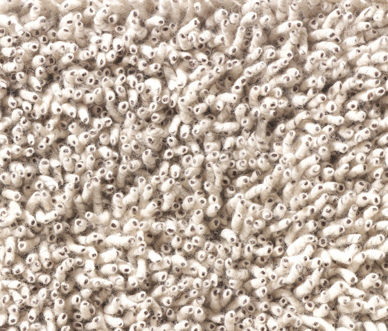 Corale 742 di danskina bv
