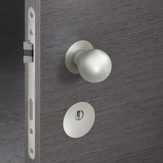Morrison Lever Handle by FSB