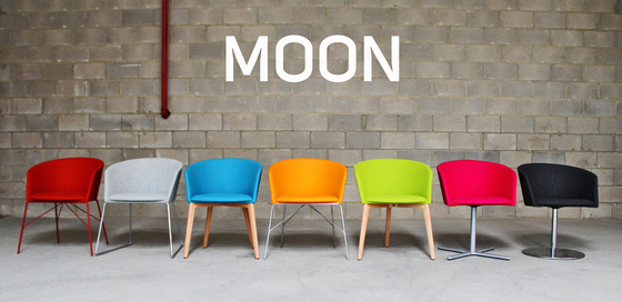 Moon Bold 664 MD4 by Capdell