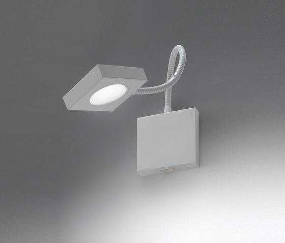 Flex LED by ALMA LIGHT