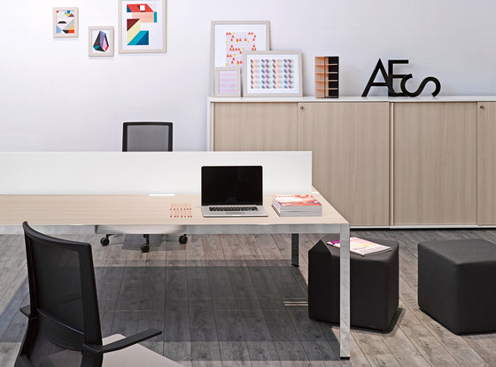 Frame+ Executive by Sinetica Industries