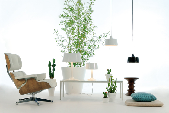 One Wall lamp by Fambuena