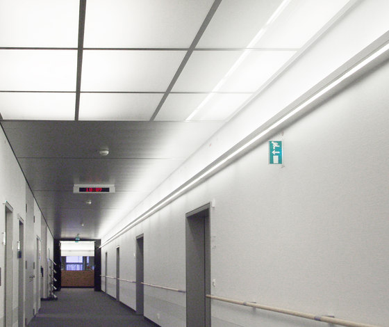 Wall-Line di Ayal Rosin