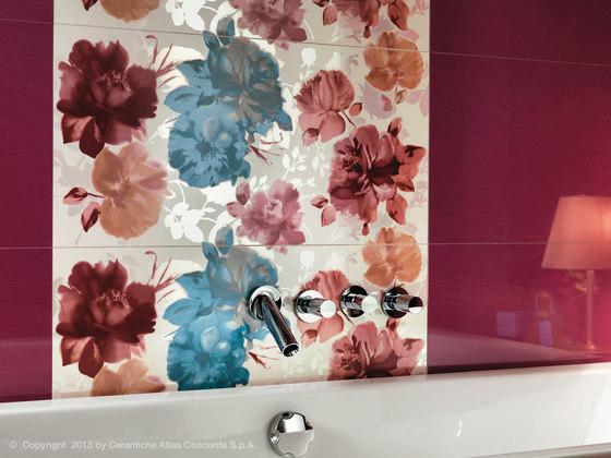 Magnifique Rosa Mosaico di Atlas Concorde