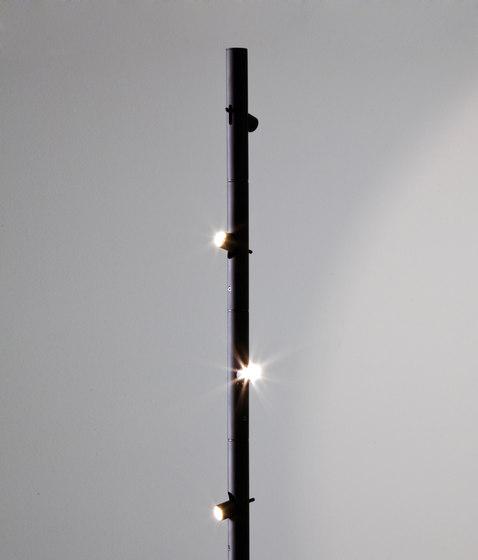 Colibri* von martinelli luce