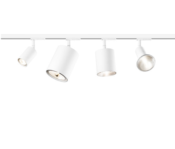 Naked on Track B | Ceiling Lamp by Vertigo Bird