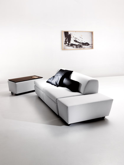 New Tank 2105 Bedsofa by Vibieffe