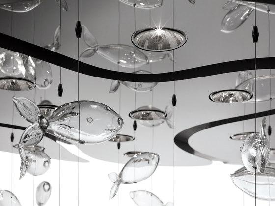 Aquarium von Barovier&Toso