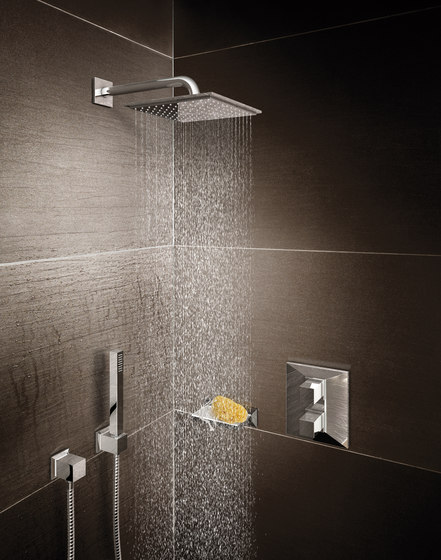 "Rainshower® F-Series 5"" Side shower 1 spray by GROHE"