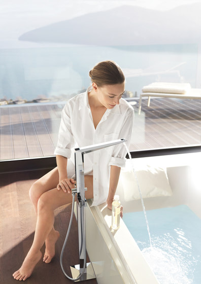 Allure Brilliant Toilet paper holder by GROHE