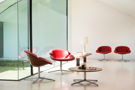 Bloom armchair de Jori