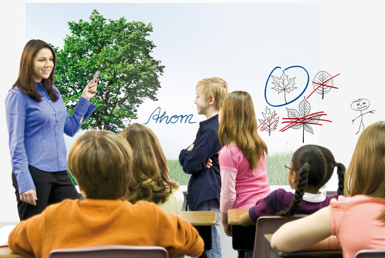 3M™ Projection Screen Whiteboard Film PWF-500 by 3M