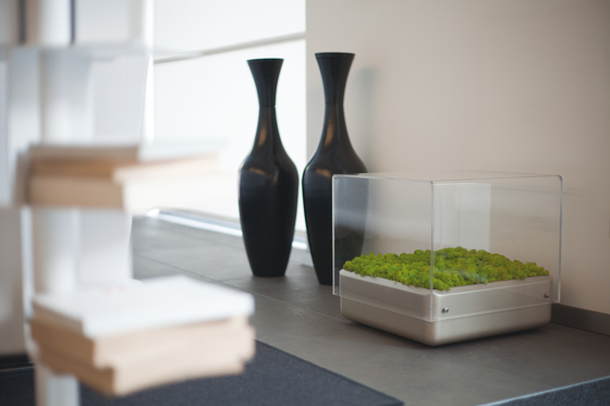 Moss Table by Verde Profilo