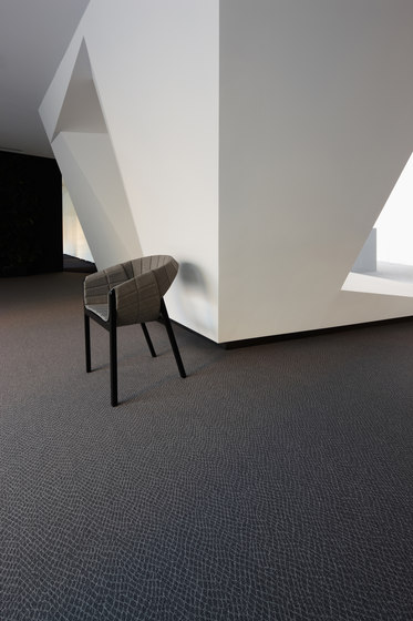 Python 701 by OBJECT CARPET