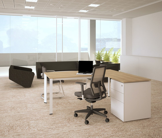 Plato Double Working Desk by Nurus