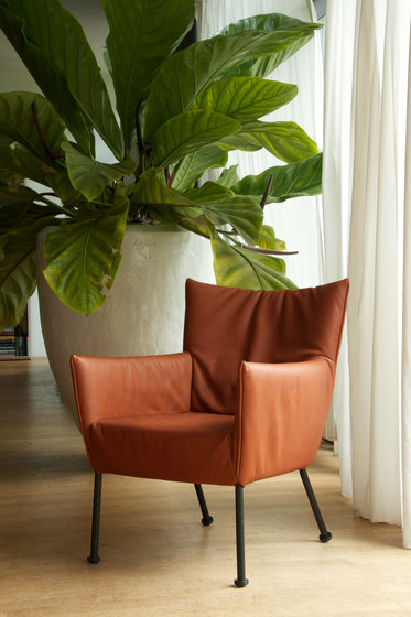 Togo armchair di Label