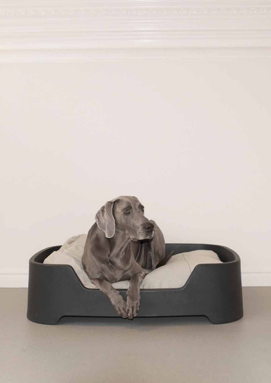 Dog's Palace Small Dark Grey with denim cushion by Wildspirit