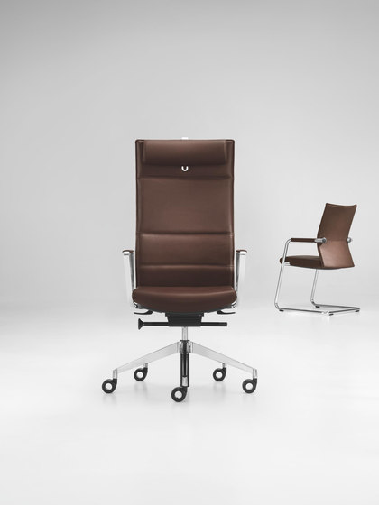 DIAGON Executive cantilever chair de Girsberger