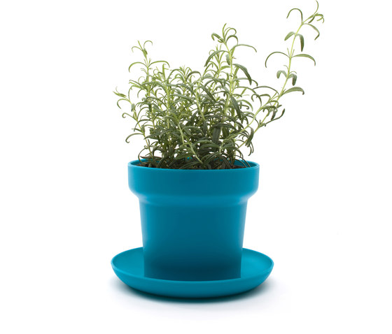 GREEN Plant Pot by Authentics