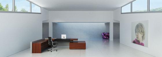 D6 Desk system by Holzmedia